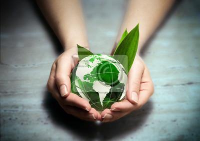schützen die grünen von amerika