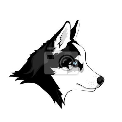 Schwarz Weiß Sibirischer Husky Mit Blauen Augen Hand Gezeichnet