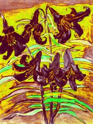 Bild Schwarze Lilien