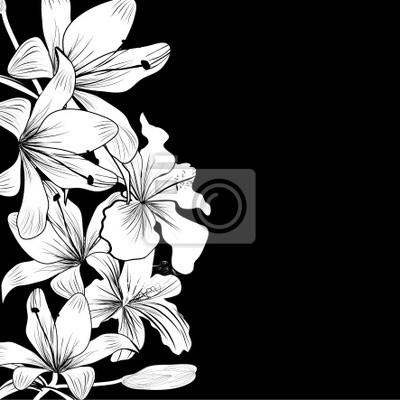 Schwarze und weiße Hintergrund mit weißen Blumen