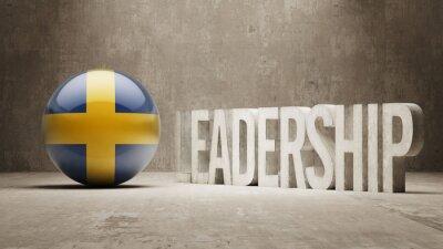 Schweden. Führungskonzept