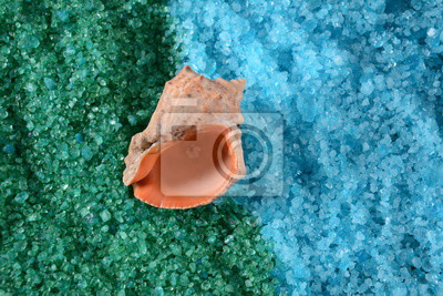 Bild Sea shell on the colorful salt background. Spa and body care concept. Dead Sea Salt. Aromatic spa treatment. Natural ingredients for homemade body salt scrub. Beauty and skin care concept.