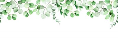 Bild seamless border, frame of eucalyptus leaves and branches. watercolor drawing green leaves of eucalyptus on white background. print for wedding, invitations, congratulations. web banner