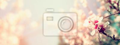 Bild Selektiven Fokus. Jahrgang gefiltert mit Glitzer-Overlay