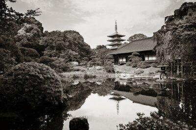 Bild Sensoji-Tempel