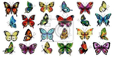 Bild set multicolored butterflies