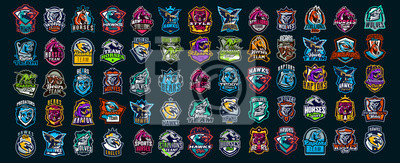 Bild Set of animal emblems. Bear, dinosaur, eagle, leopard, wolf, horse, fox, lion, grizzly, raptor, hawk, jaguar, cat, lynx, leo, stallion, birds. Sports mascots, colorful collection, vector illustration