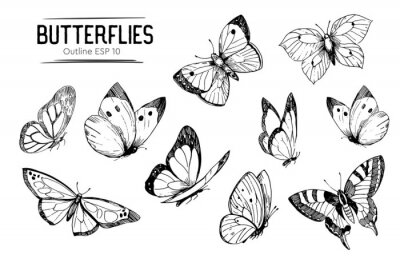 Bild Set of butterflies outlines. Hand drawn illustration converted to vector