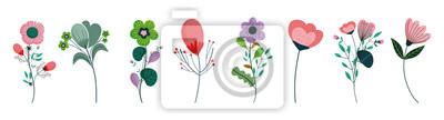 Bild set of differents flowers decoration on white background