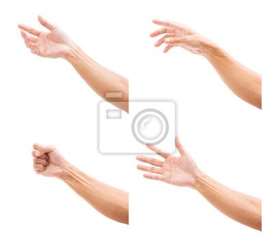 Bild Set of man hands isolated on white background