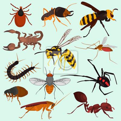Set Pf Gefahrliche Insekten Farbe Flache Symbole Leinwandbilder