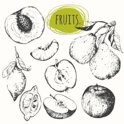 Bild Set von Hand gezeichnet Apfel, Zitrone, Birne, Pfirsich. Sketch Früchte.