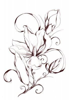 Shape of magnolia flowers.My eigenes Kunstwerk.