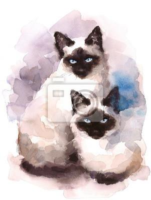 Bild Siamesische Katzen Aquarell Handgemalte Haustier Porträt Illustration
