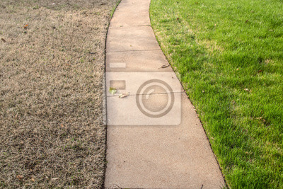 Bild Sidewalk with green fescue on one side and brownish bermuda grass on the other side in the springtime