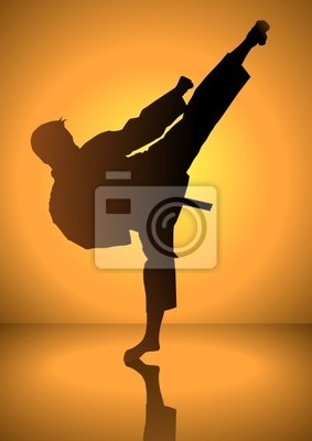 Silhouette eines Karateka tun Standing Side Kick