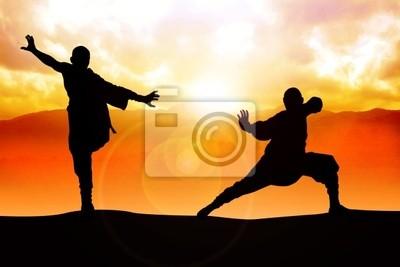 Silhouette Illustration von zwei Zahlen zu tun Kampfkunst Haltung