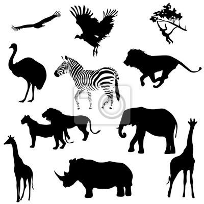 Bild Silhouetten von Tieren Savanne