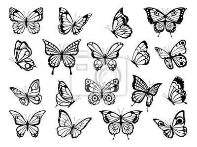 Bild Silhouettes of butterflies. Black pictures of funny butterflies. Insect butterfly black silhouette, winged gorgeous animal, vector illustration