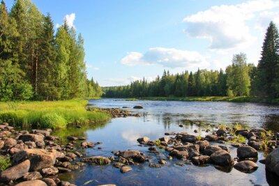 Bild Sommer-Fluss