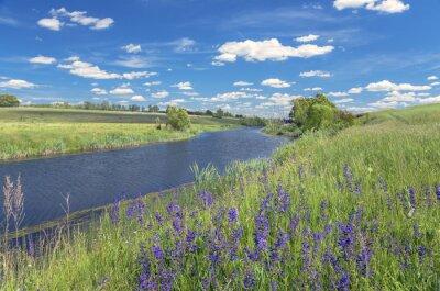 Bild Sommerlandschaft mit Fluss