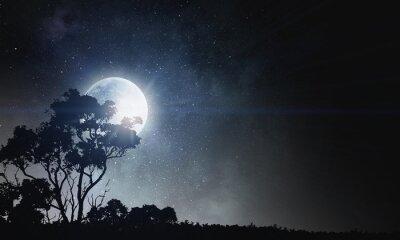 Bild Sommernacht Hintergrund