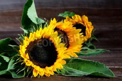 Bild Sonnenblumen auf Holz