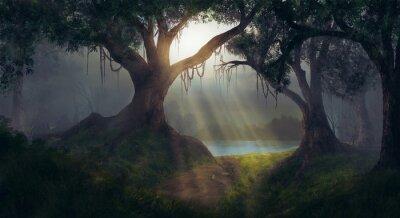 Bild Sonnenstrahlen im Wald