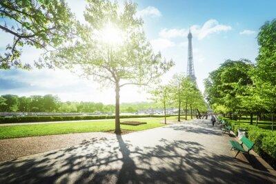 Bild Sonnigen Morgen und Eiffelturm, Paris, Frankreich