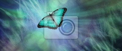 Bild Soul Release Metaphor for departing soul - lone jade green  coloured butterfly set against a radiating feathered bokeh green and blue  coloured background