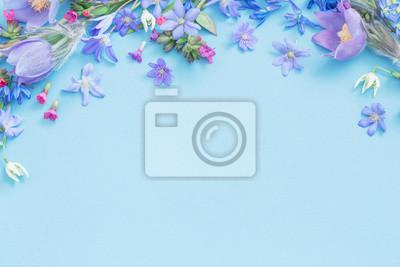 Bild spring flowers on blue background