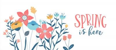 Bild Spring season card of hand drawn cute flowers