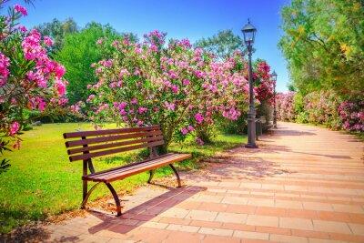 Bild Stadtpark