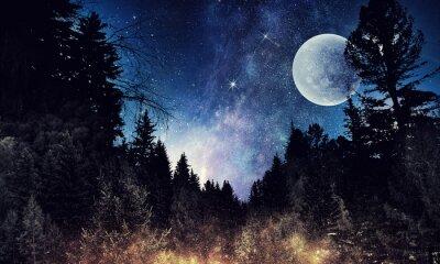 Bild Sternenhimmel und Mond. Gemischte Medien