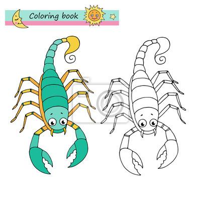 Sternzeichen Skorpion Leinwandbilder Bilder Scorpio Schöne