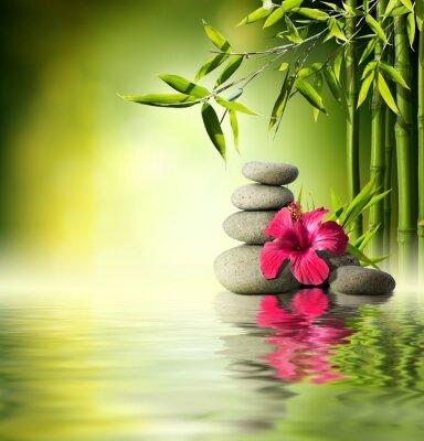Stones, rot Hibiskus und Bambus auf dem Wasser