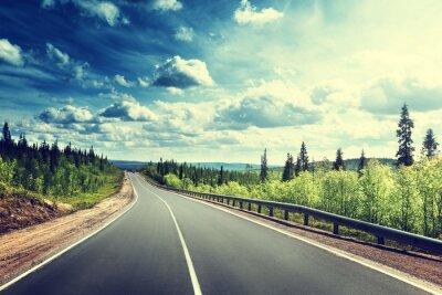 Bild Straße im Norden Wald