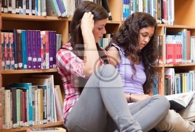 Studentinnen ein Buch zu lesen
