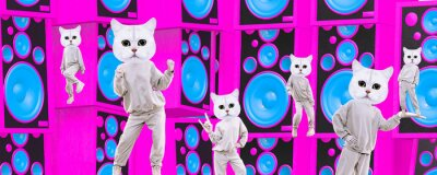 Bild Stylish collage banner. Funny Cats dancing, clubbing party mood.  Ideal for Social networks, promotion, music, dj concept