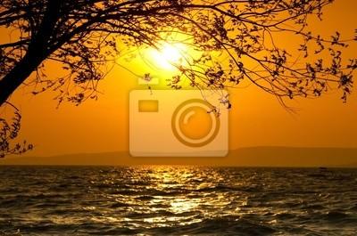 Sunset Szene