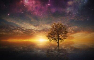 Bild Surreal Baum im See