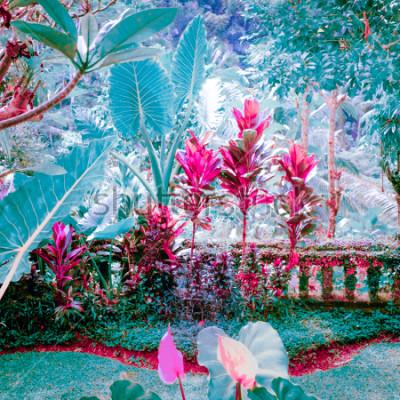 Bild Surreale Farben des tropischen Gartens der Fantasie mit erstaunlichen Anlagen und Blumen