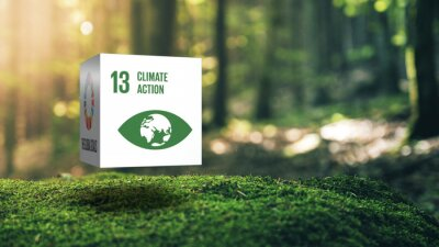 Bild Sustainable Development 13 Climate Action in Moss Forrest Background 17 Global Goals Concept Cube Design