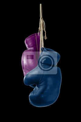 Symbol für Mann und Frau Boxen mit Pink & Blue Boxing Gloves