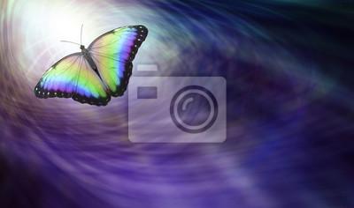 Bild Symbolische spirituelle Freigabe - Schöner mehrfarbiger Schmetterling, der in das Licht bewegt, das eine abreisende Seele darstellt