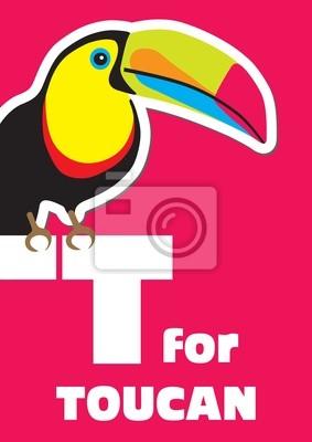 T für den Toucan, ein Tier-Alphabet für Kinder