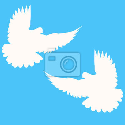 Tauben Hochzeit Tauben Leinwandbilder Bilder Flugel 2 Taube
