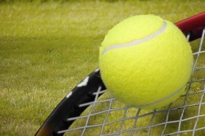 Tennis game. Tennis balls and rackets on grass