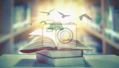 Bild  The concept of education by planting knowledge trees and birds flying to the future to open old books in the library, beautiful blurred background