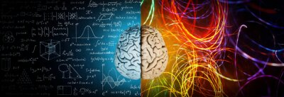 Bild The concept of the human brain. The right creative hemisphere versus the left logical hemisphere. Education, science and medical abstract background.